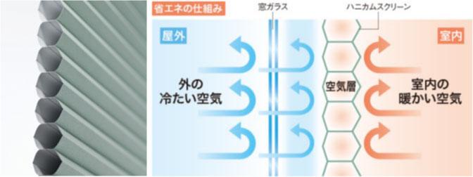 photo_1-1.jpg